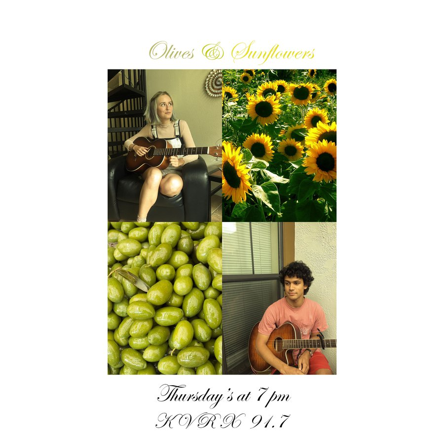 Olives and Sunflowers banner